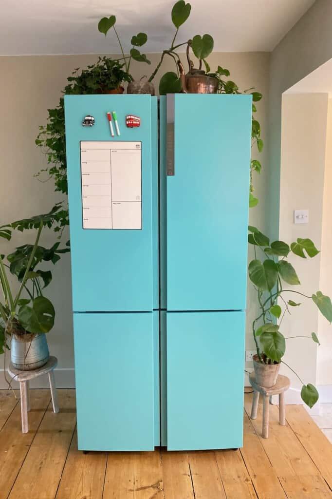 Multi-door fridge freezer freshly painted in turquoise with plants around it