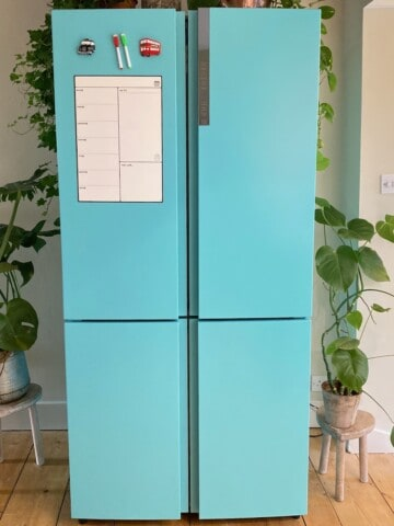 Multi-door fridge freezer freshly painted in turquoise with plants around it