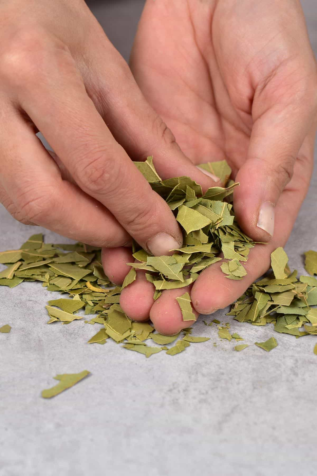 Breaking bay leaves by hand