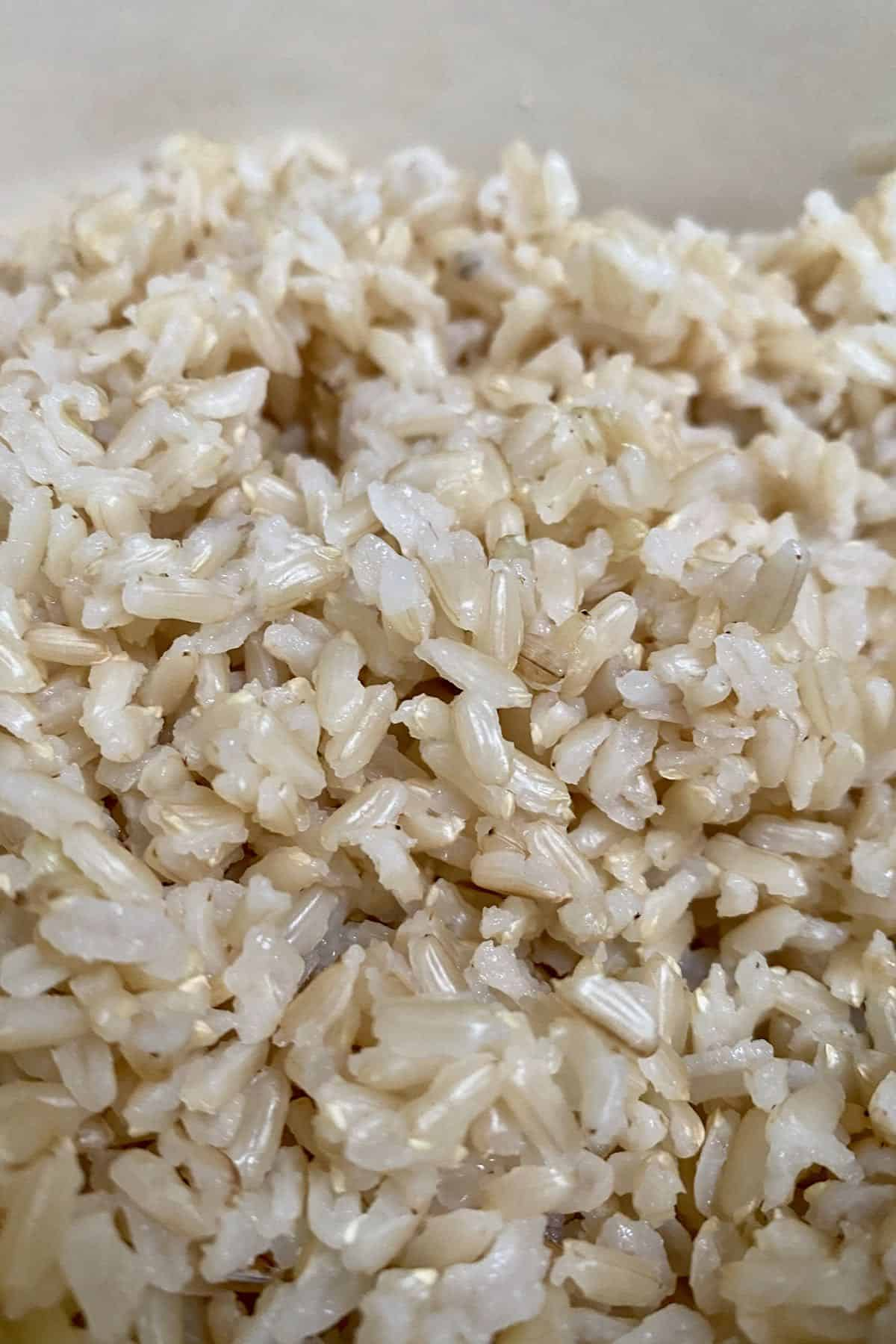 Close up of cooked brown rice