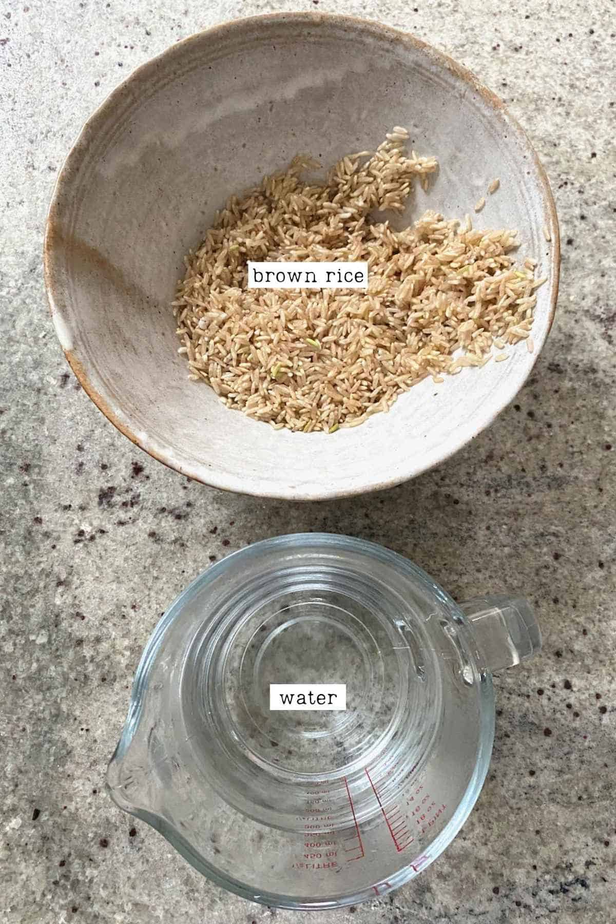 Brown Rice in a bowl and Water in a glass measuring cup