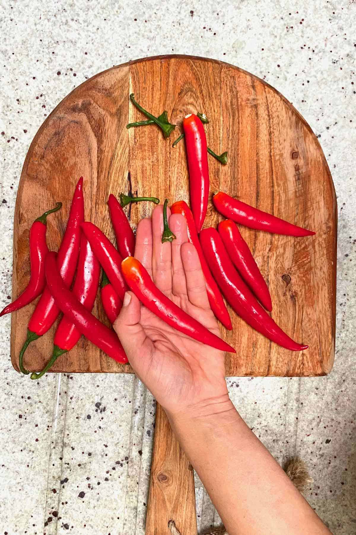 Removing the tops from red chilies