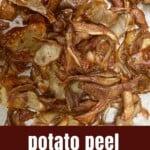 Potato skin chips on a flat surface