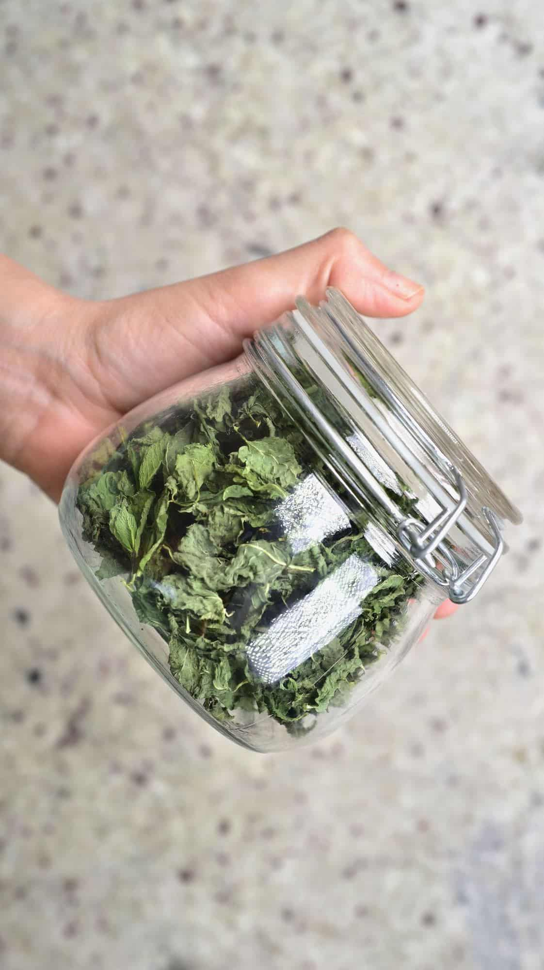 A hand holding a jar with dried mint leaves