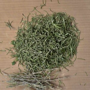 Dried rosemary with the stems removed