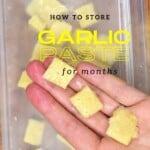 Frozen garlic cubes