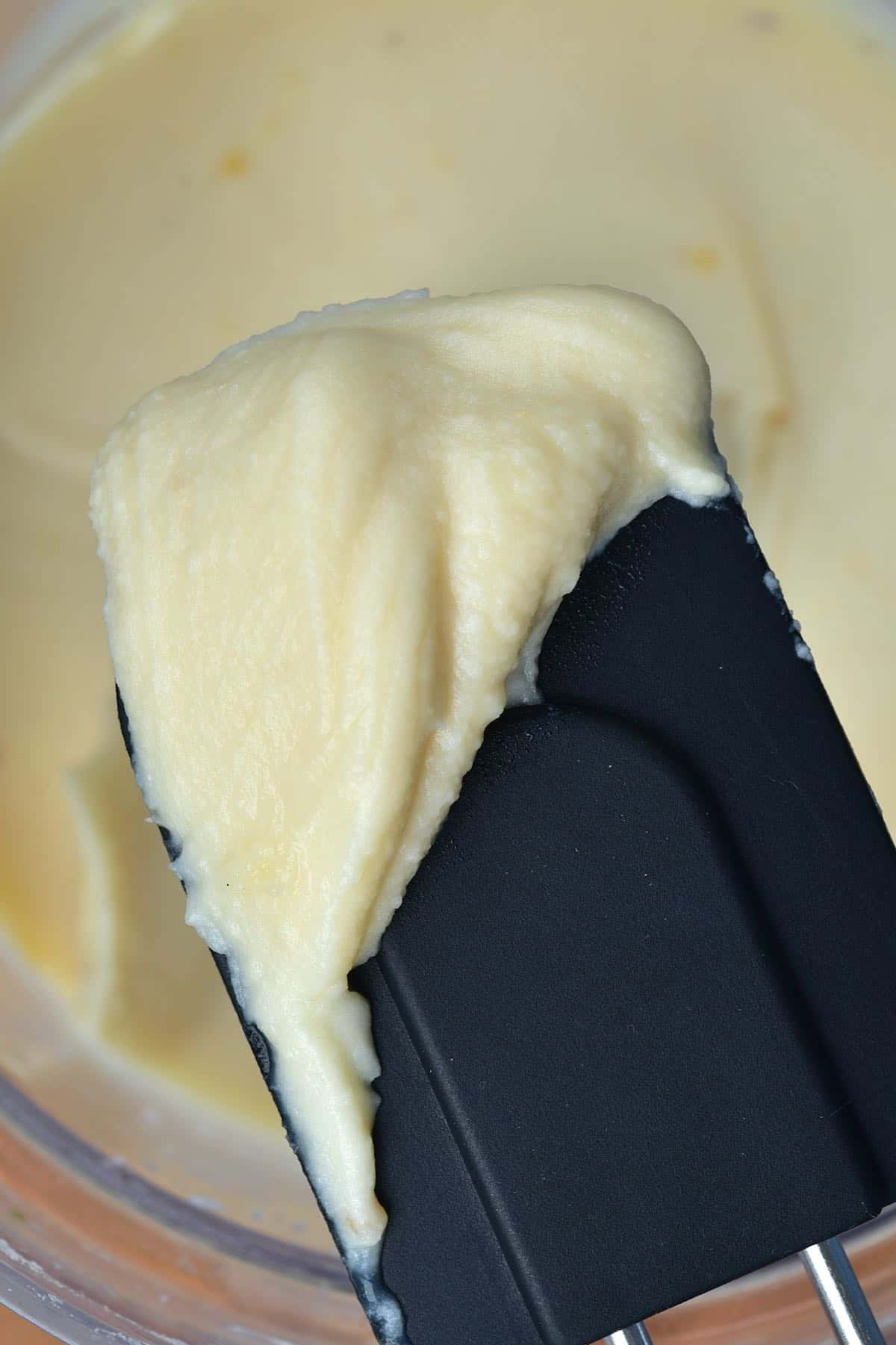 Close up of spoonful of creamy bean dip