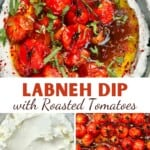 Labneh dip with roasted tomatoes served in a bowl