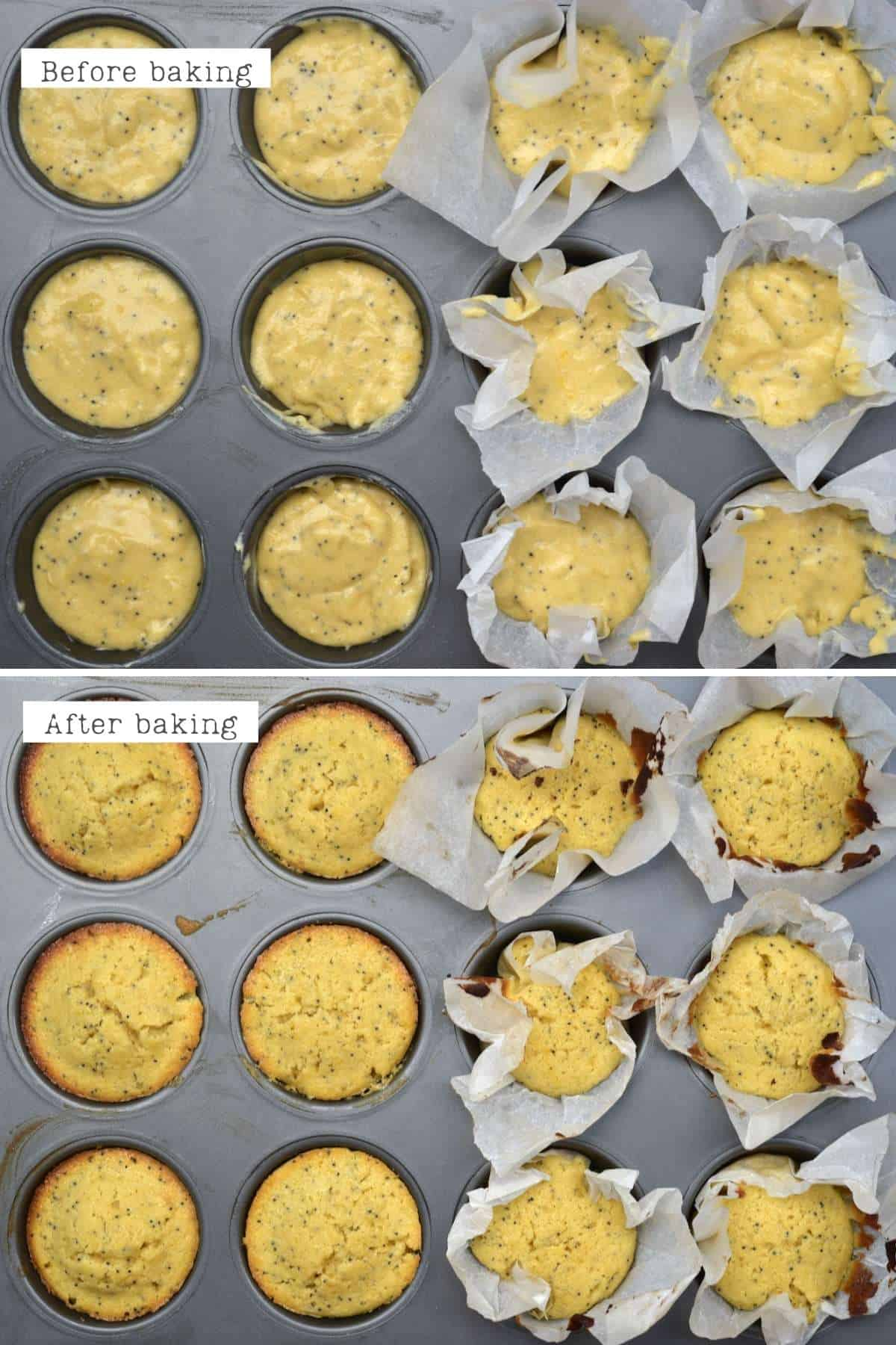 Before and after baking lemon cupcakes