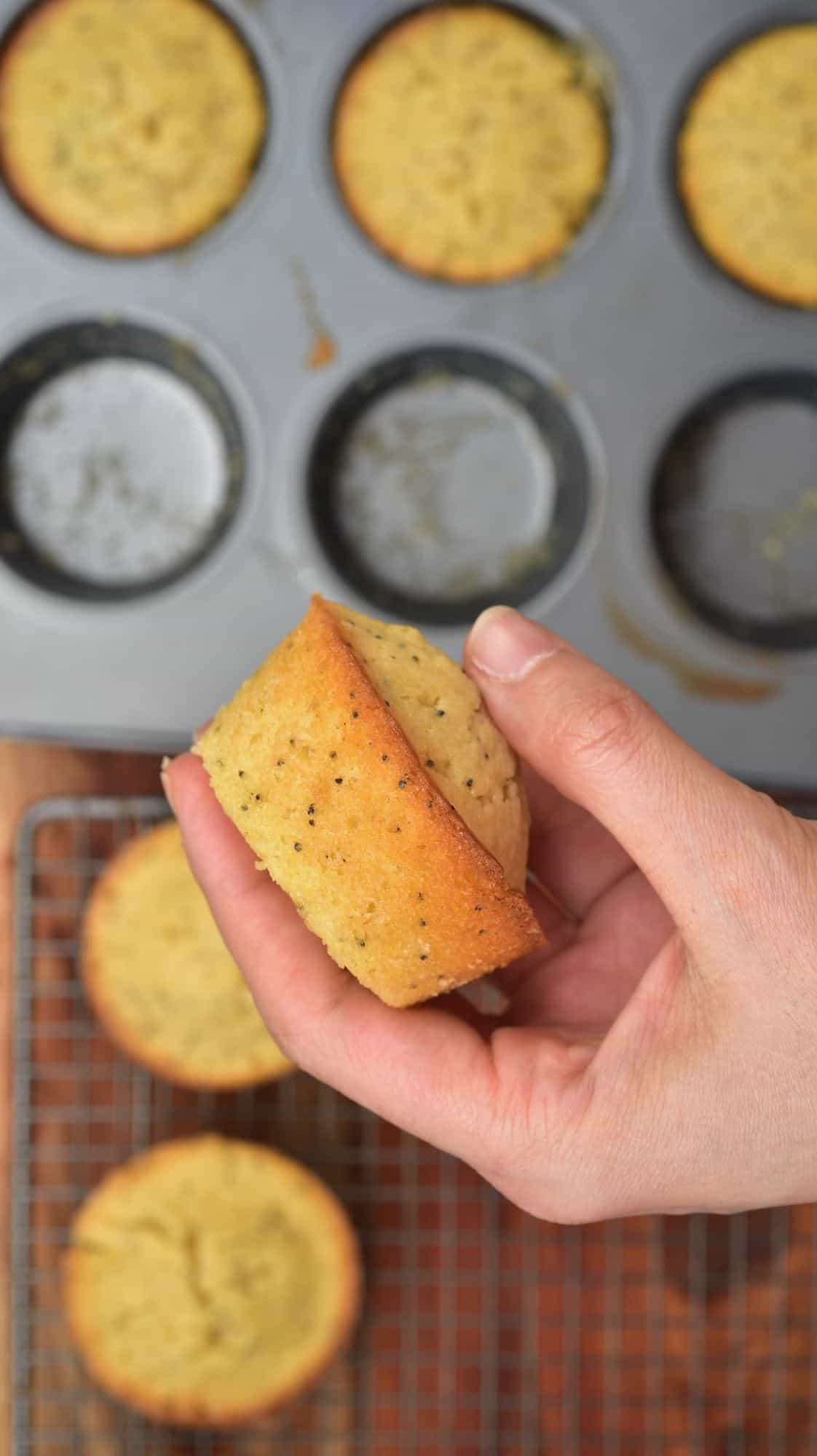 Freshly baked lemn cupcake