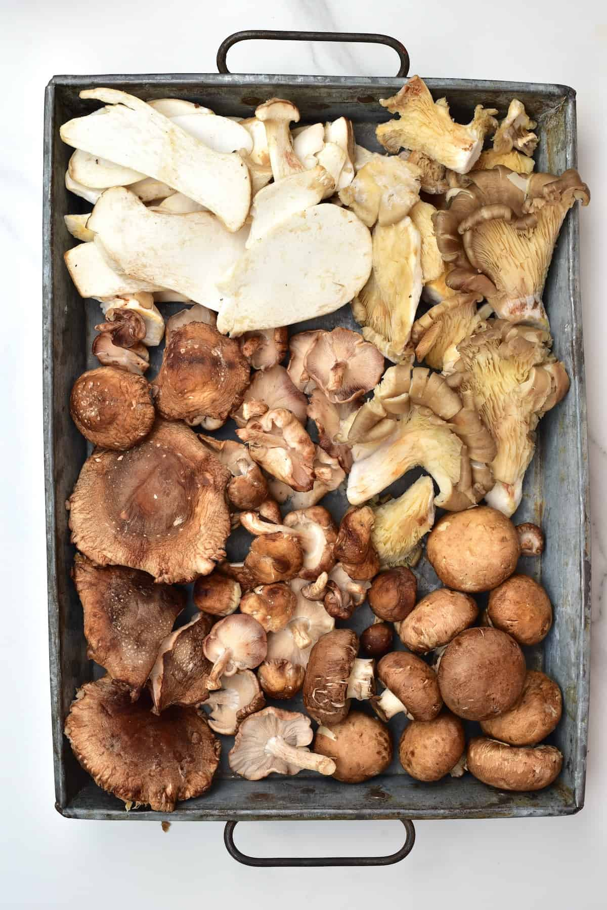 A selection of mushrooms in a tray