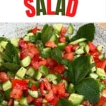 Tomato and cucumber salad topped with mint leaves