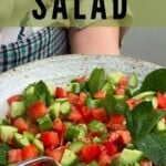 A bowl of tomato and cucumber salad with mint leaves
