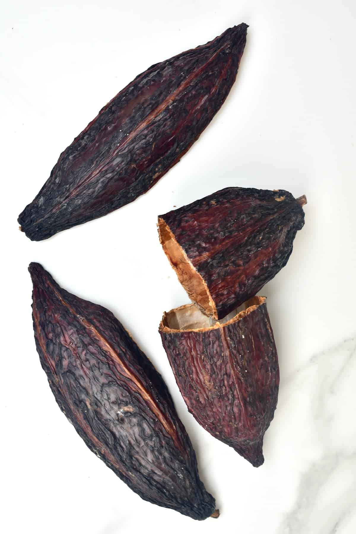 Dried cacao shells