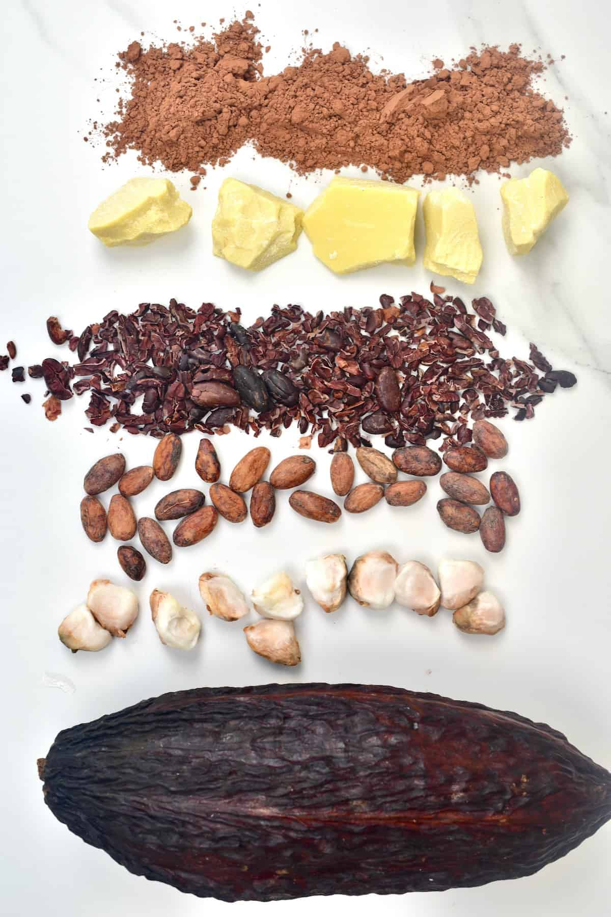Products of the cacao bean