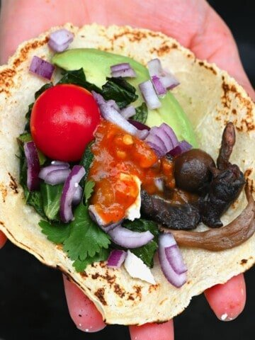 Mushroom taco in a hand