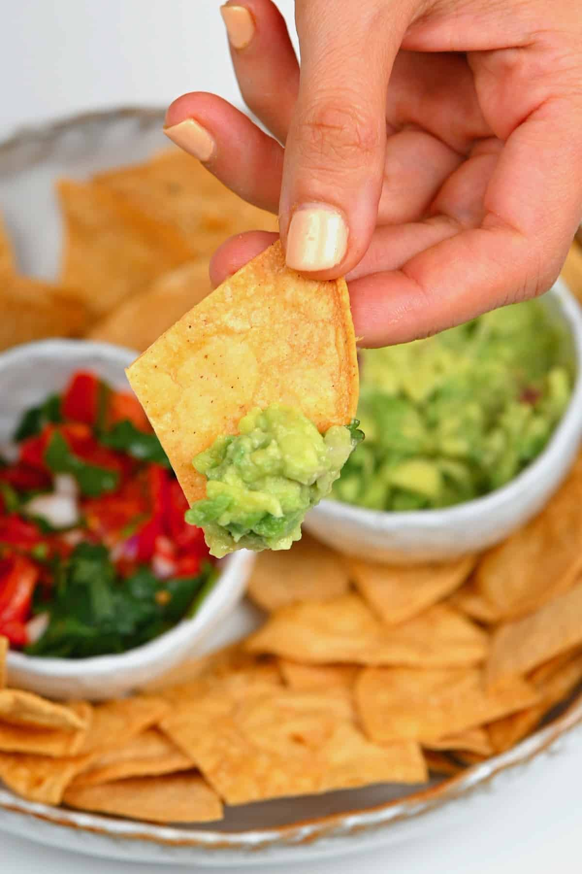 Corn tortilla chips dips in guacamole