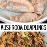 Mushroom dumplings and mushroom filling