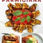 Steps for making eggplant parmigiana