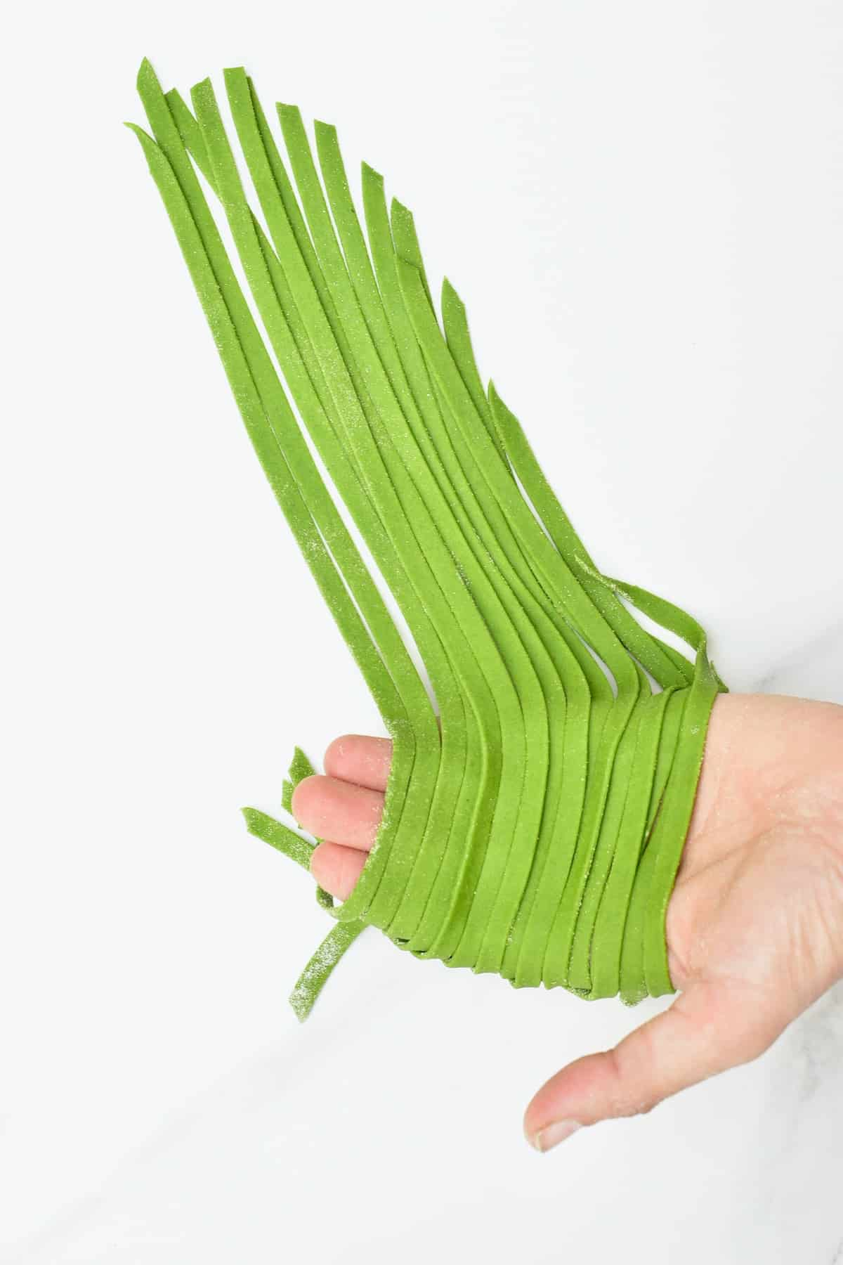 Spinach pasta cut into Tagliatelle