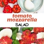 A caprese salad in a plate and ingredients to make it