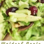 A spoonful of celery apple salad