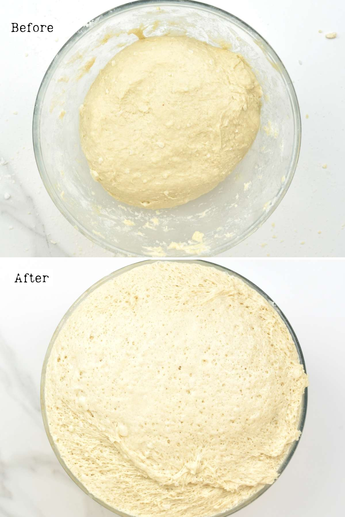 Before and after proofing coconut bake dough