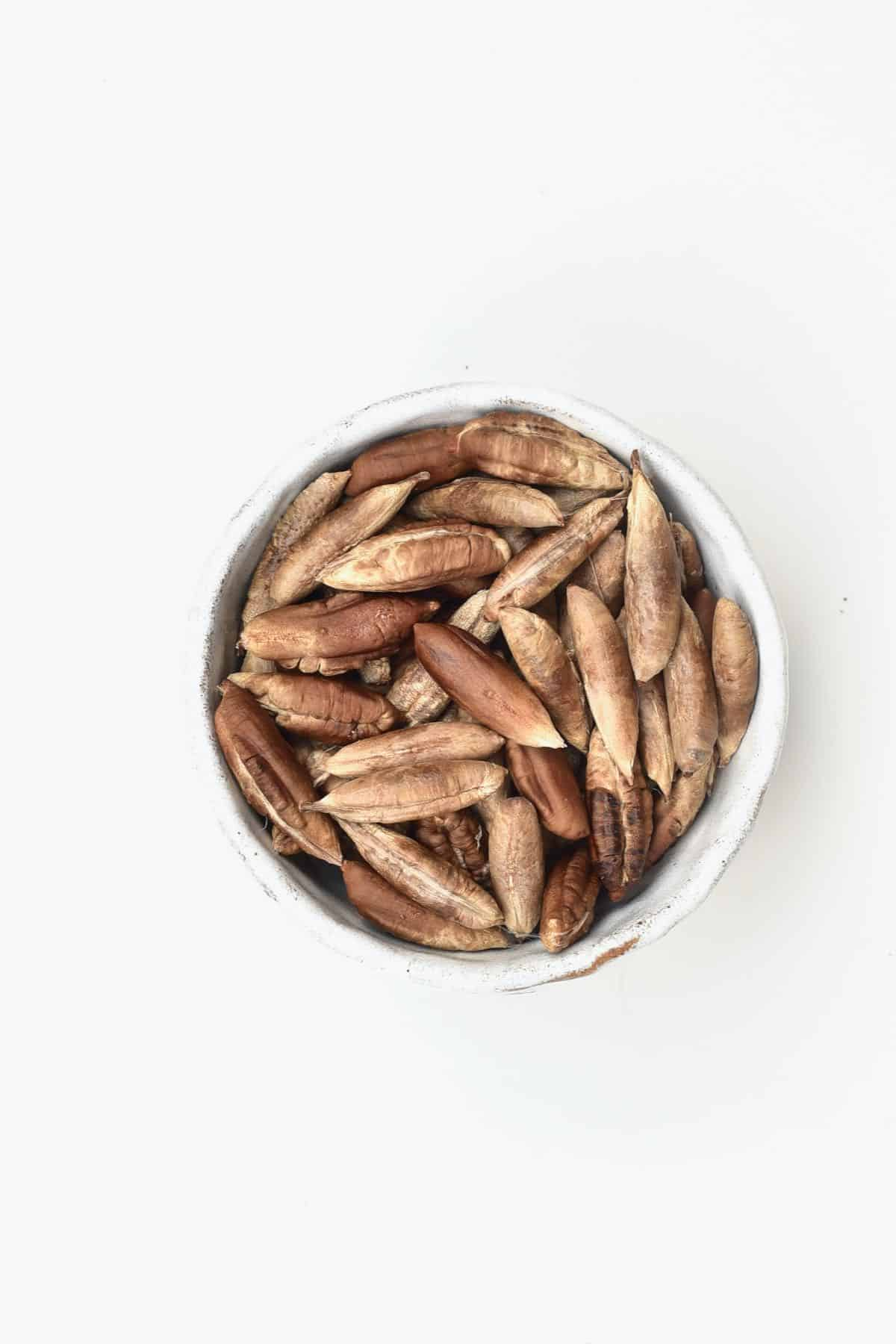 Date seeds in a small bowl