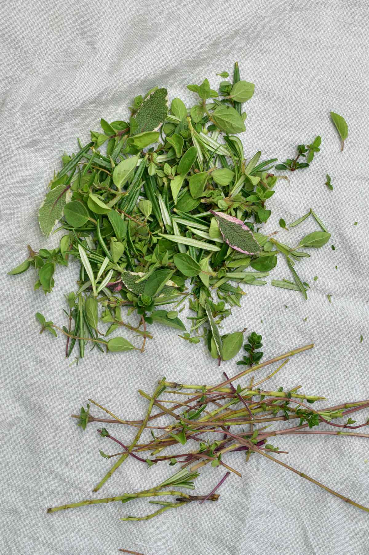 Fresh herbs with removed stems