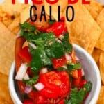 A small bowl with Pico de Gallo and corn tortilla chips