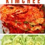 Napa cabbage and kimchi