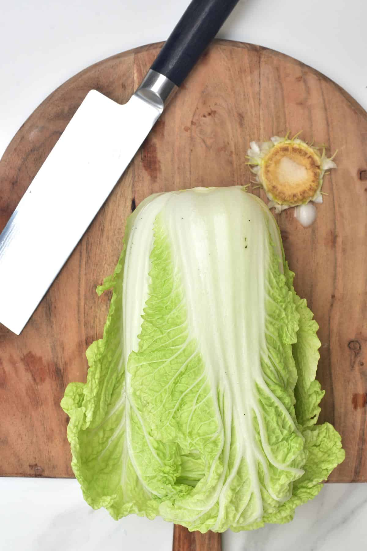 Cutting the stem of cabbage