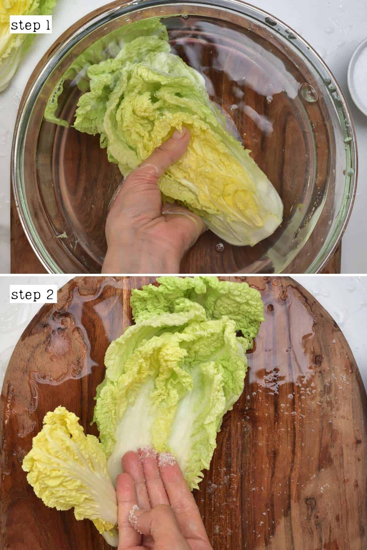 Steps for salting napa cabbage