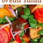 Panzanella salad with basil