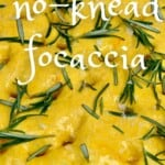 Ready to bake turmeric no-knead focaccia