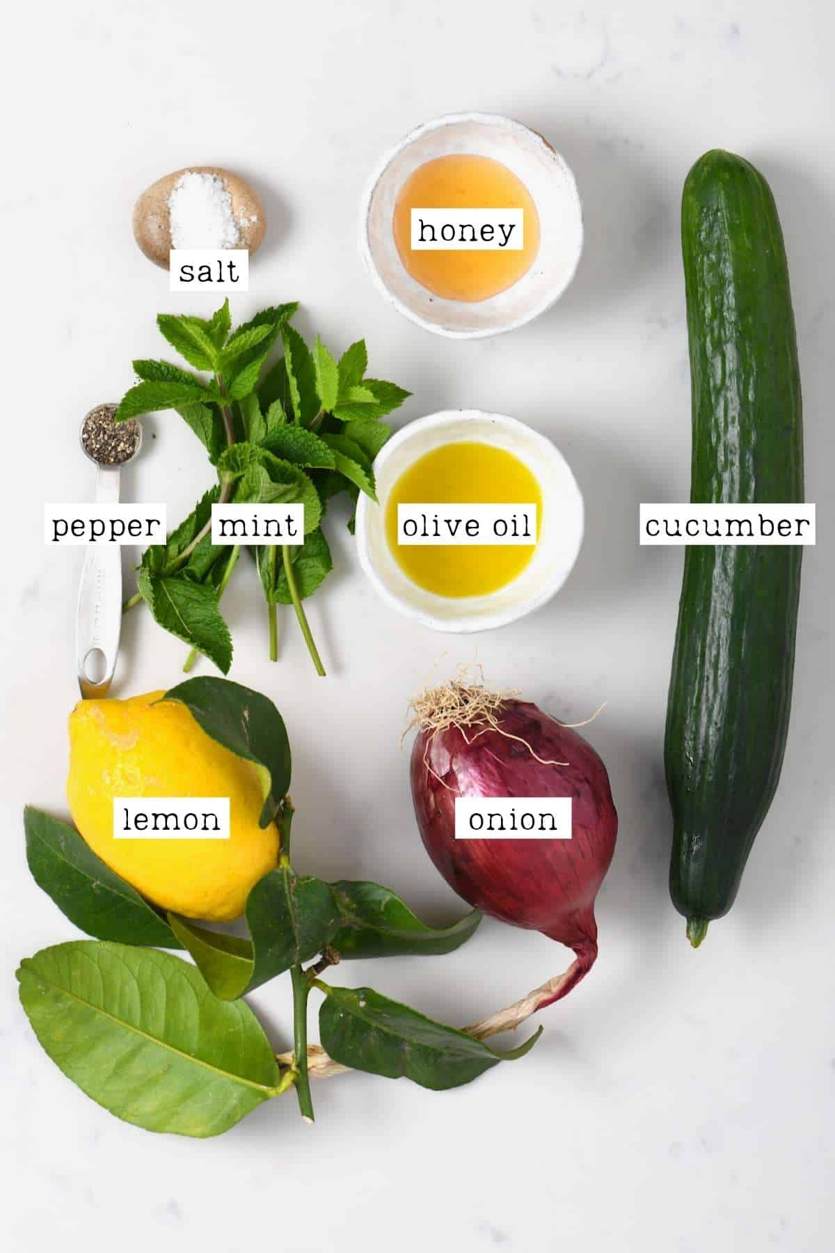 Ingredients for cucumber onion salad
