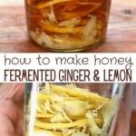 Fermented honey ginger lemon in a jar