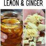 Fermented honey ginger lemon and ginger slices