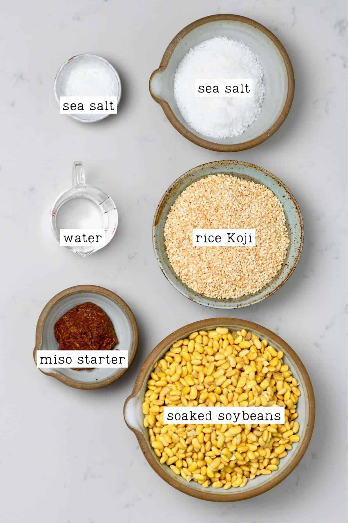 Ingredients for miso paste