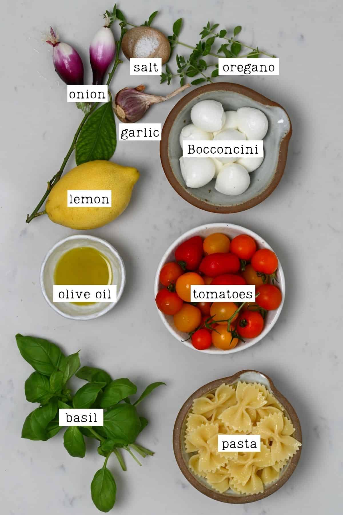 Ingredients for pasta tomato salad