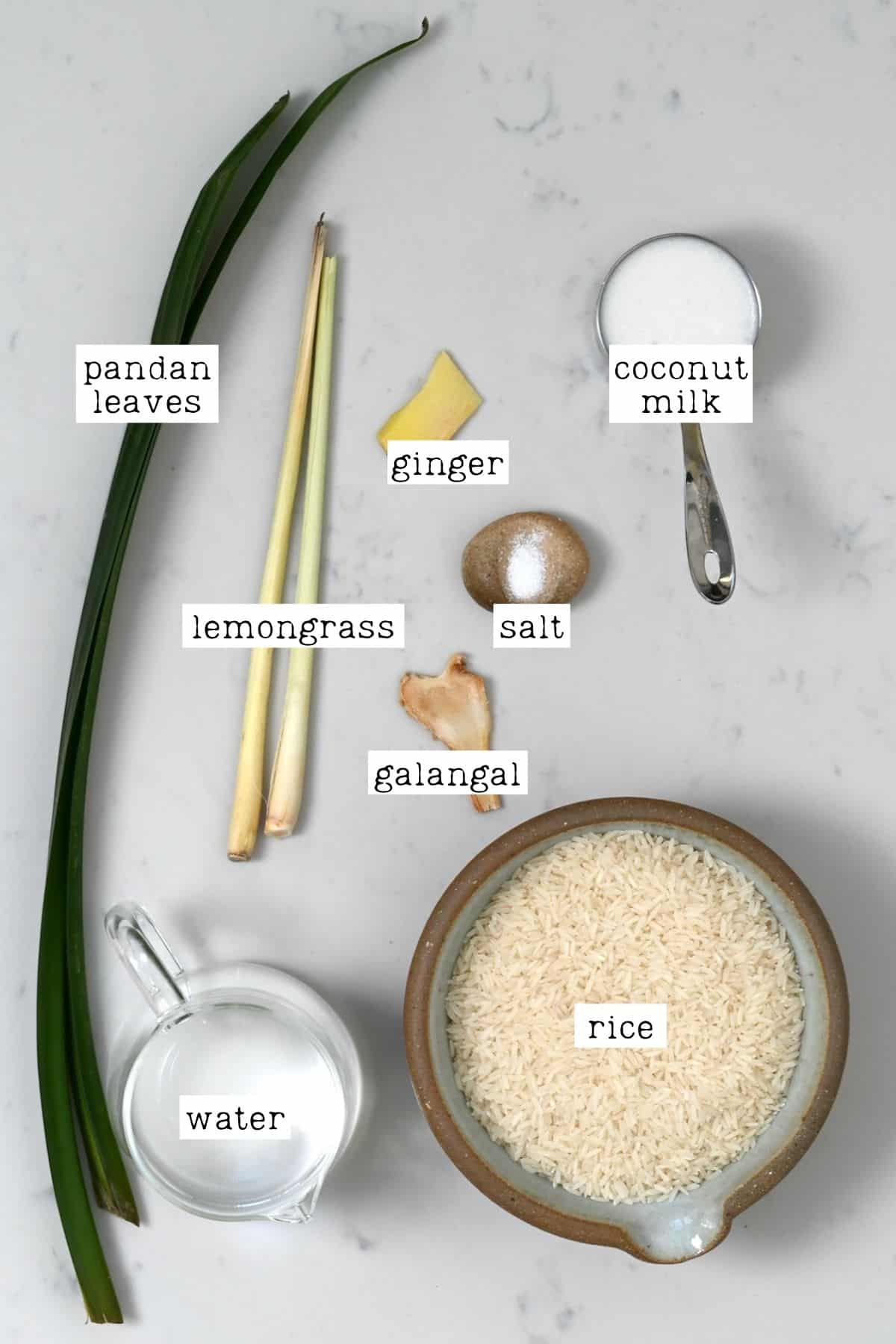 Ingredients for Indonesian rice
