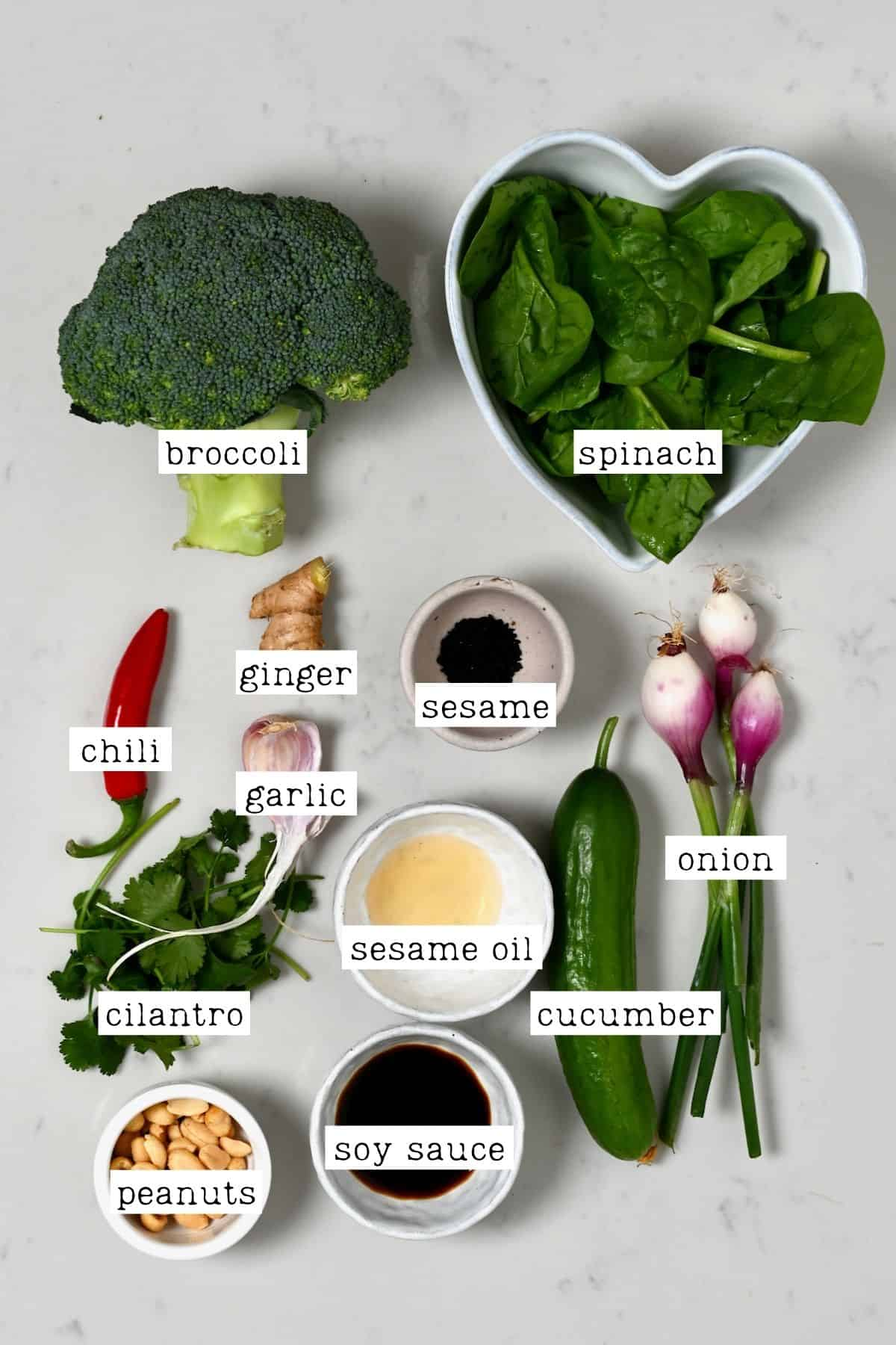Ingredients for Asian Broccoli Salad