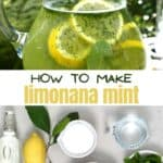 Mint lemonade and ingredients to make it
