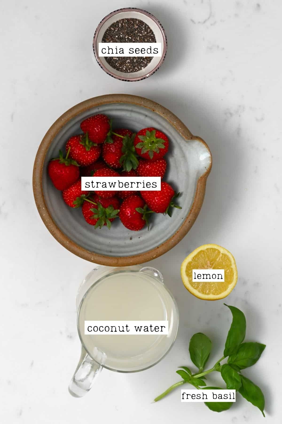 Ingredients for chia coconut energy drink