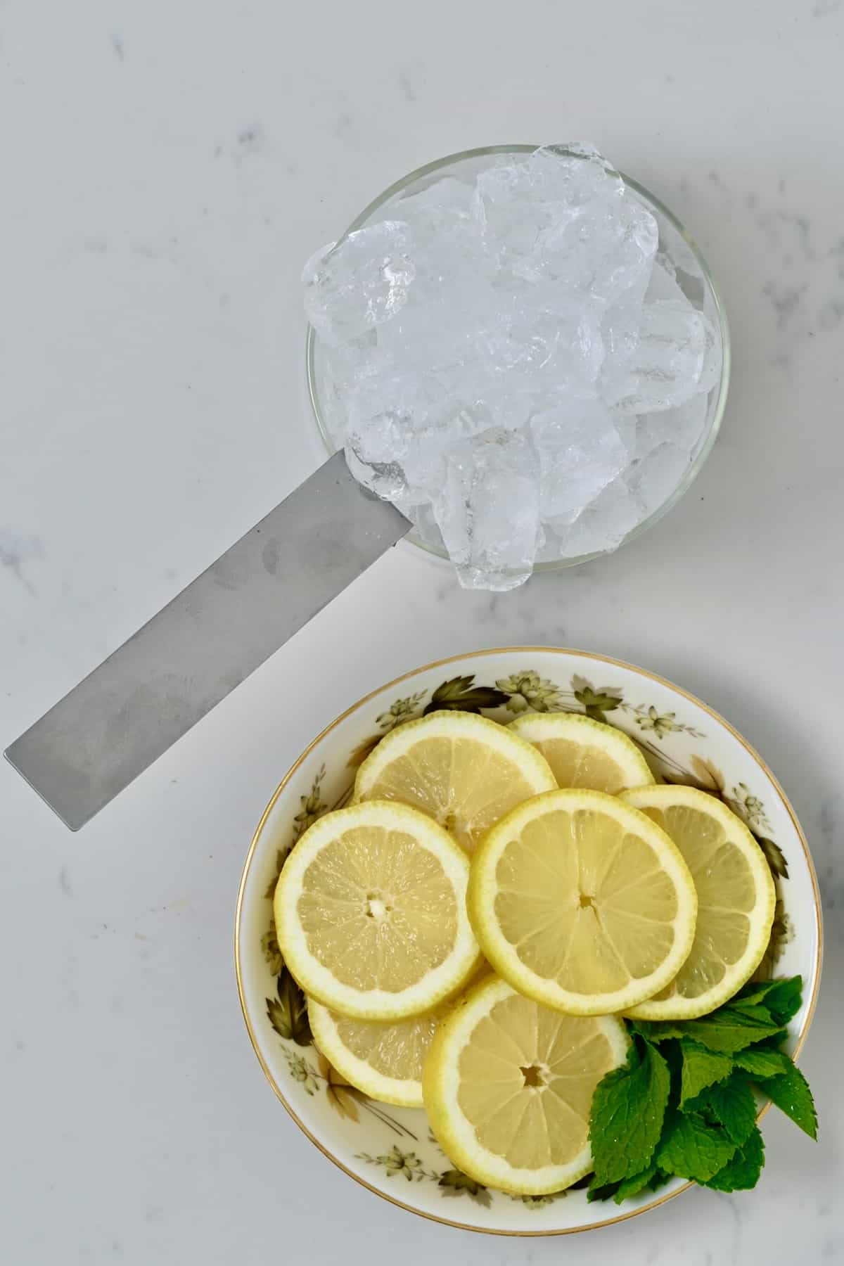 Ice lemon slices and mint leaves