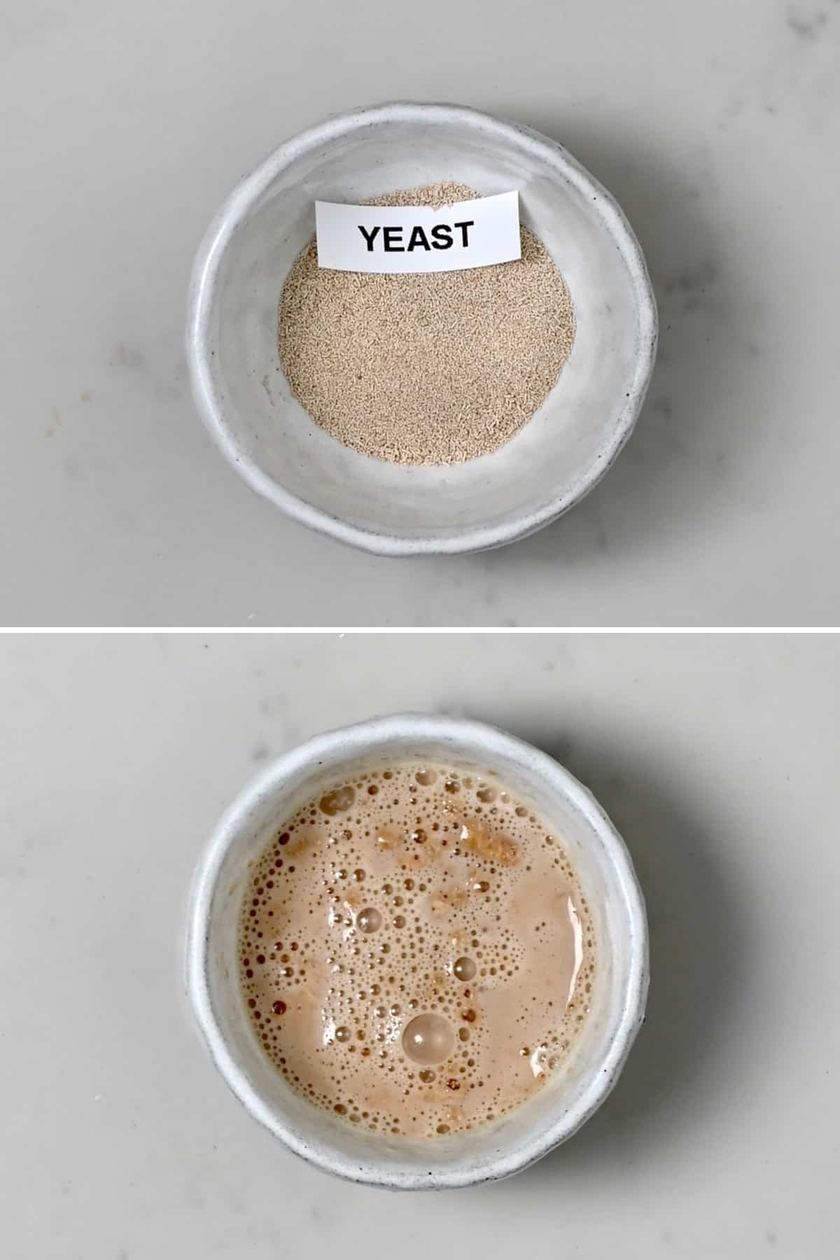Yeast that is leavening